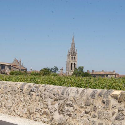 Le château Pavie-Macquin : le vignoble, les crus, les millésimes
