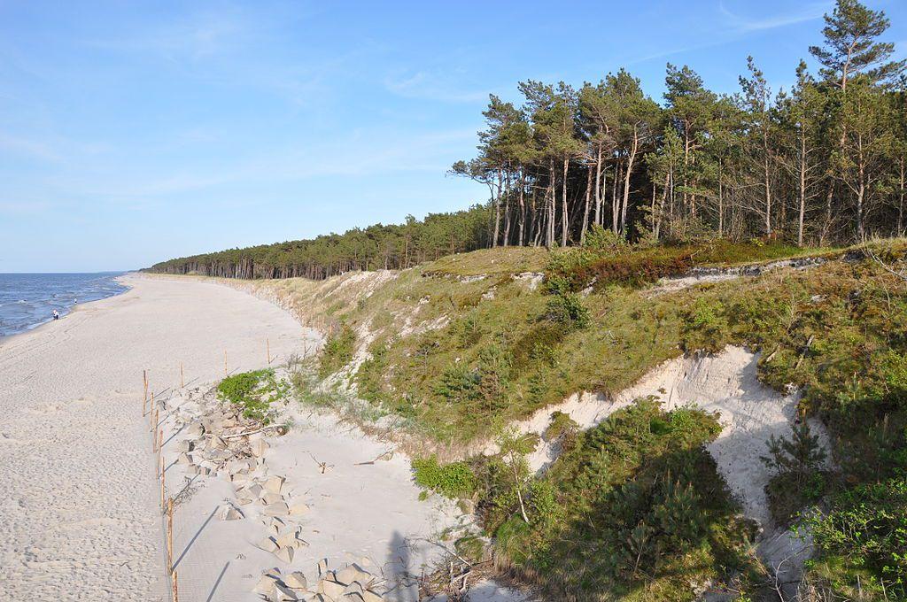Dune de sable et forêt de pin à Mrzezyno en Pologne - Photo de JDavid