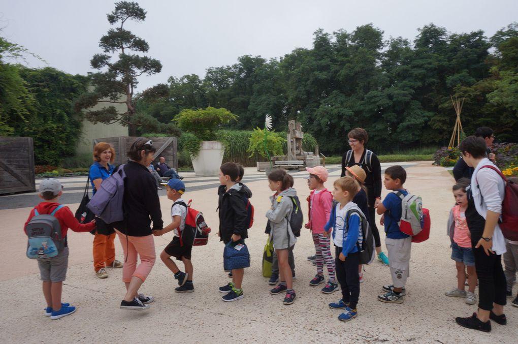 Sortie scolaire à Terra Botanica