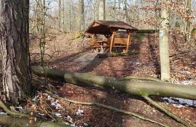 Schutzhütte des Verschönerungsvereins Veitshöchheim am ZICKZACK im Glück