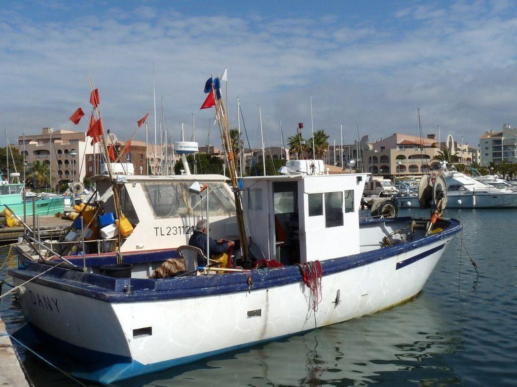 DANY , Dans le port de Hyères