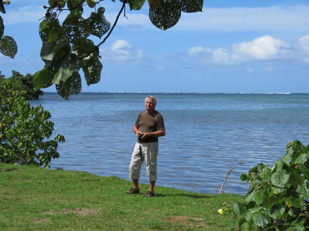 Saga Tahitienne &co.... 3ème er 4ème jours : découverte de Moorea et de Tahiti