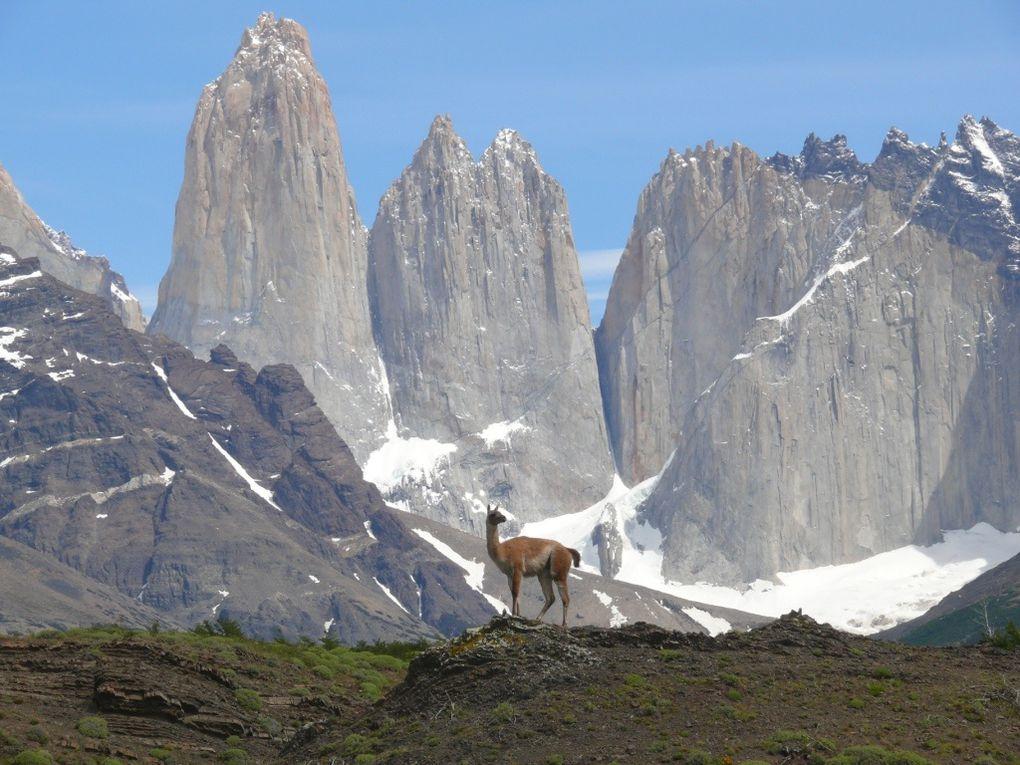 De la Terre de Feu au parc de Torres del Paine