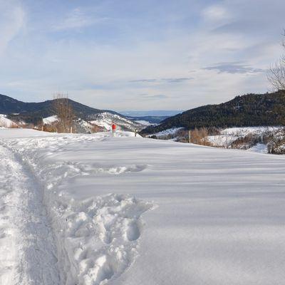 Neige au Col du Bonhomme