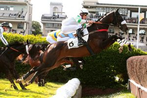 Grand Steeple Chase de Paris dimanche à Auteuil : le jour de Perfect Impulse !
