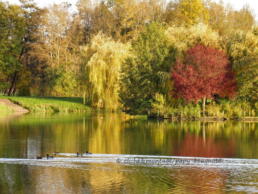 Je vous invite à visiter notre région au travers de cette belle saison haute en couleurs qu'est l'Automne
