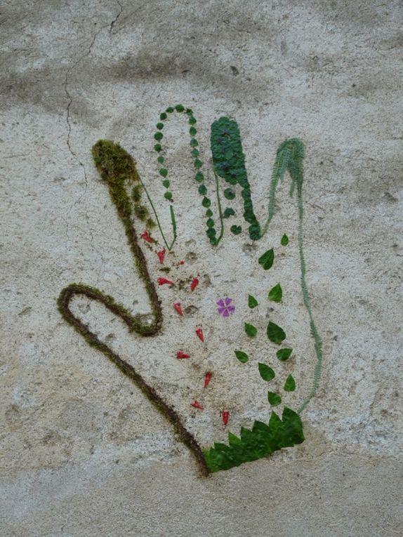 Graff végétal