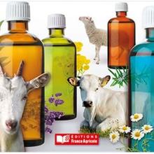 Manifeste pour les soins aux animaux par les plantes : le bal des sophismes