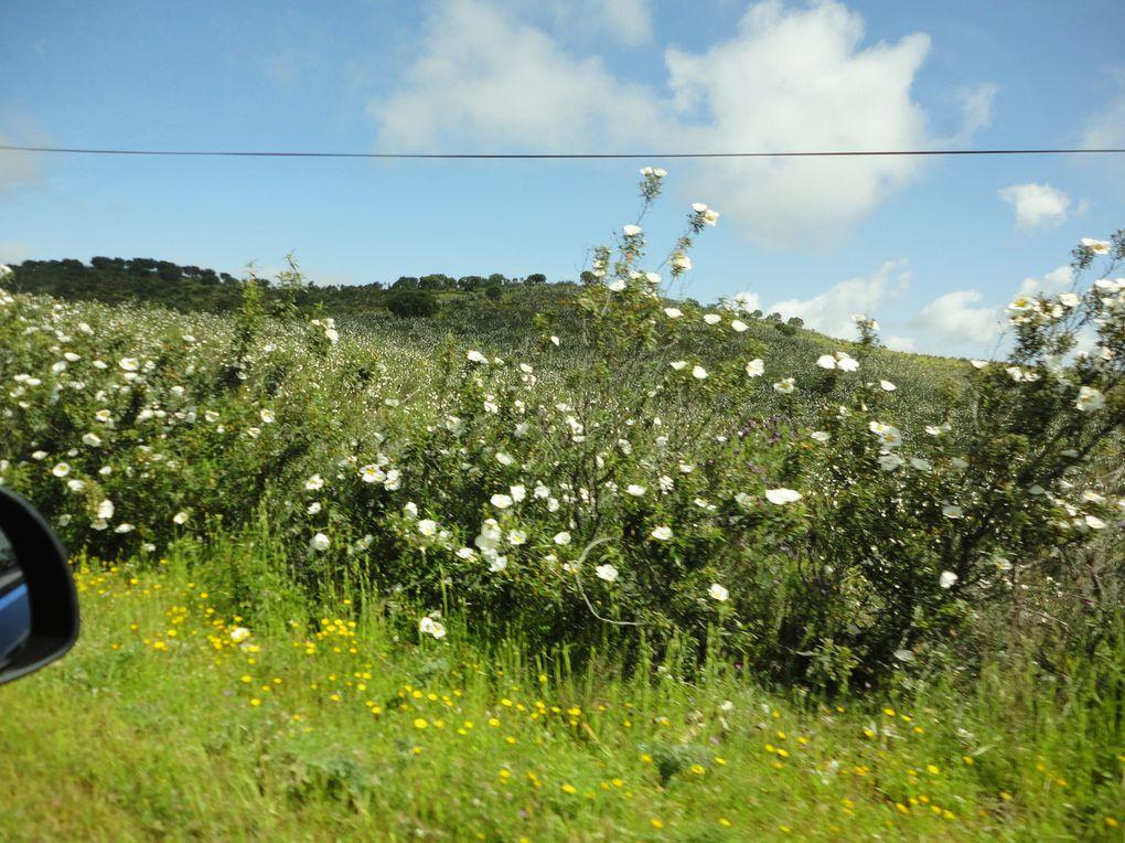 ballade en Algarve, la côte sud du Portugal