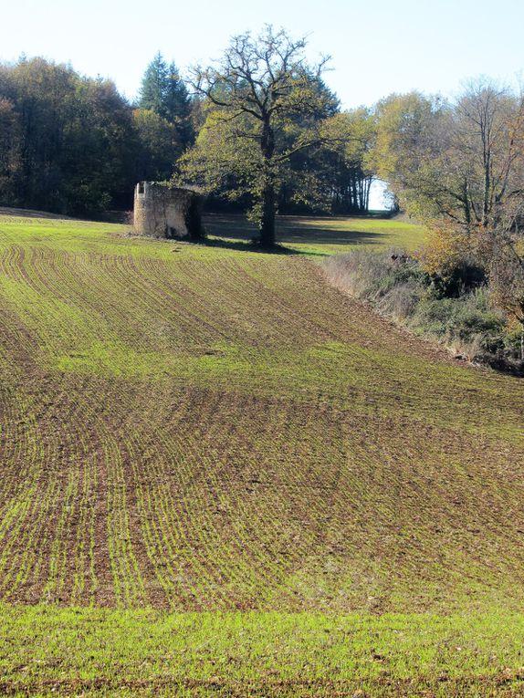 Sur une pente douce, marquée par les premiers sillons de l'automne, sa tour massive se profile.