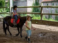 Stage Equitation Comines - 03 Aout