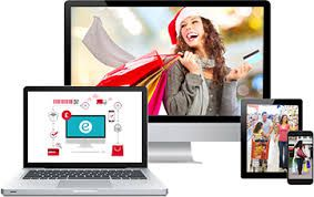 Why You Must Invest in Ecommerce Software Development?