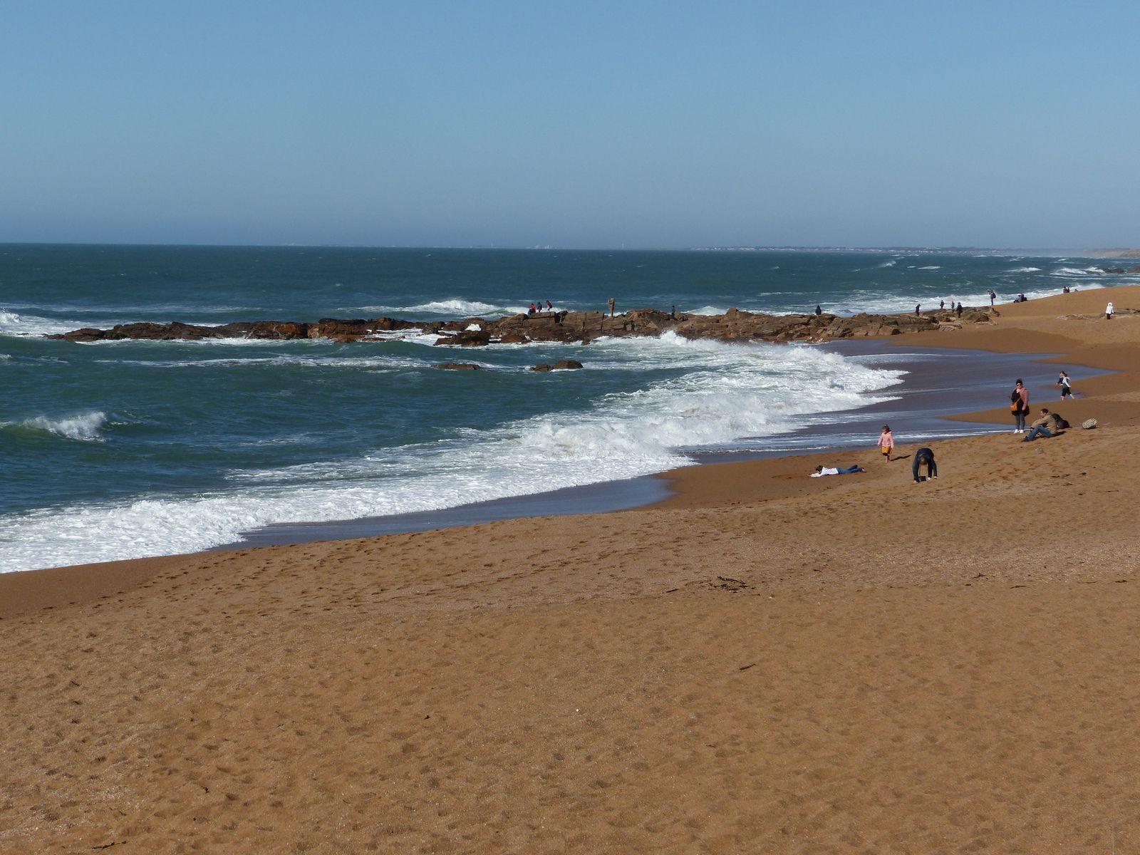 Promenade sur la plage de la Paracou