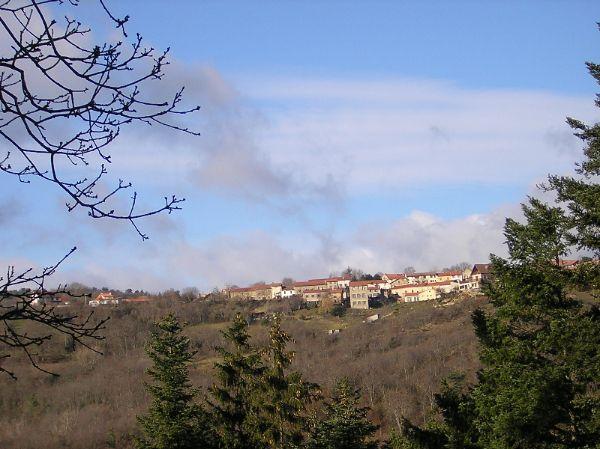 Regards sur le Parc des Volcans d'Auvergne