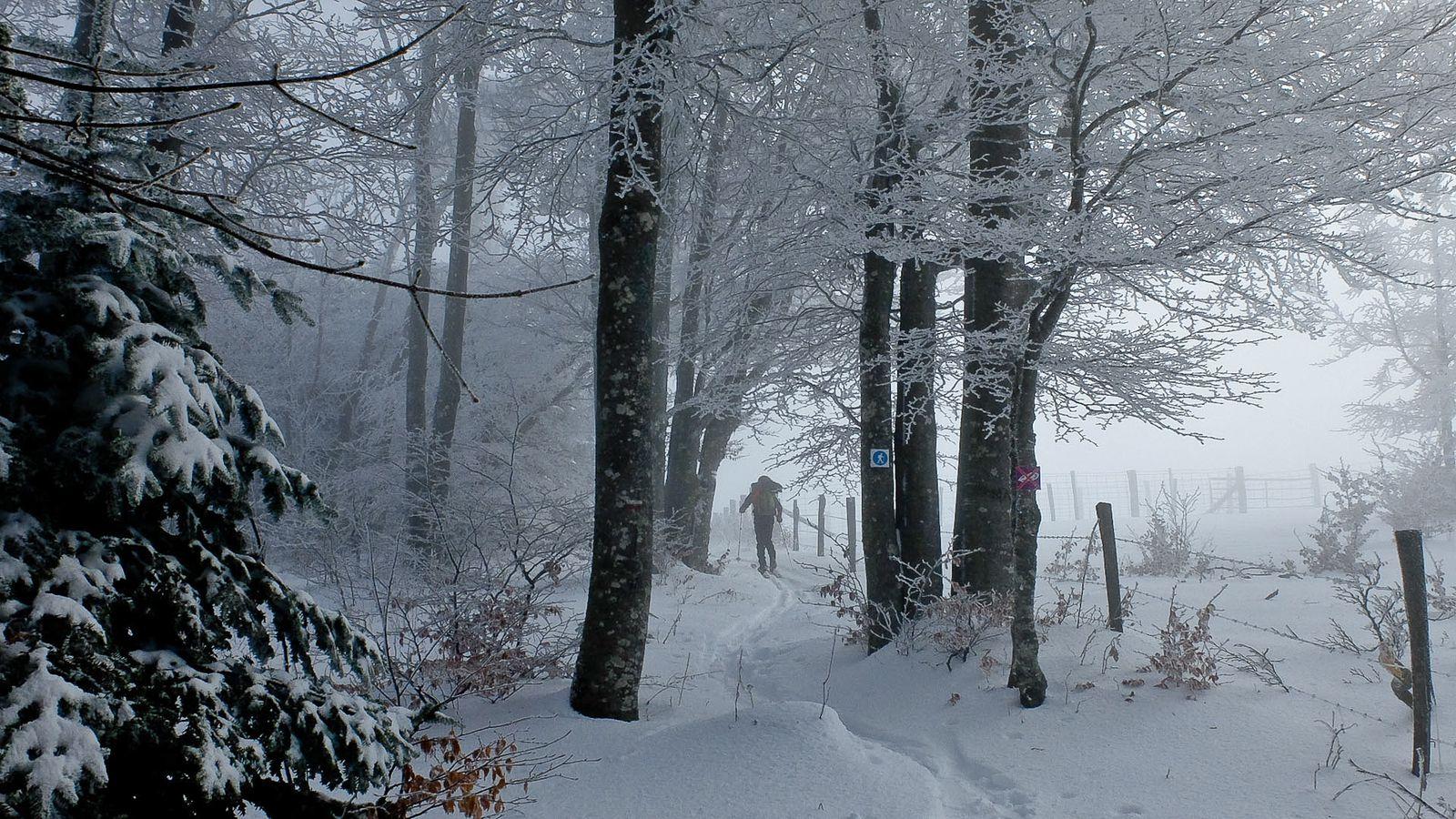 L'approche, les skis sont les bienvenues  et vues sur la face.