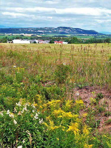 Spécial Québec 2021 (25) ... Balade dans le Kamouraska avec des vues magnifiques sur Charlevoix