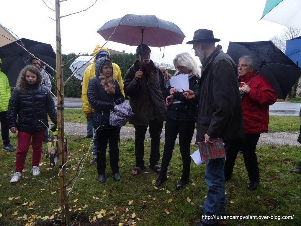 Plantation du 5ème Ginkgo Biloba pour le désarmement nucléaire unilatéral de la France