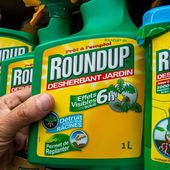 Un document interne de Monsanto établit un lien entre glyphosate et cancer