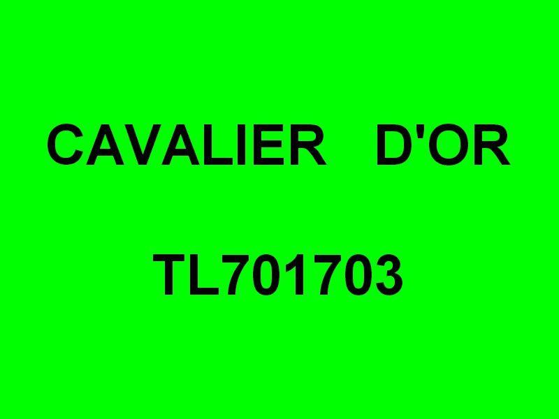 CAVALIER D'OR  TL701703 , dans le ort de Carqueiranne