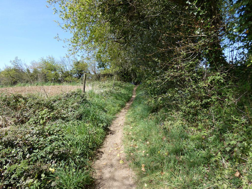 Saint Divy : le circuit des ruines du Moulin de Pen-ar-choat
