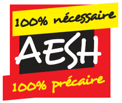AESH : balivernes gouvernementales !
