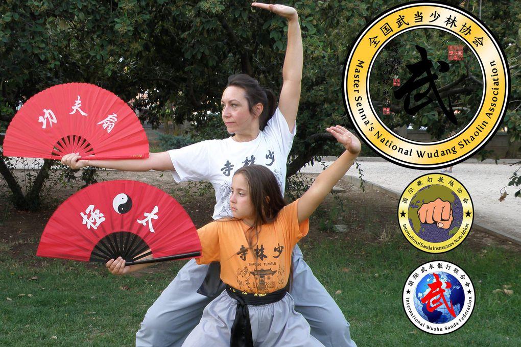 Grandmaster senna kung fu alcala de henares