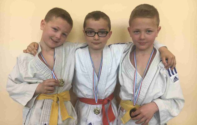 Rencontre interclubs du JUDO CLUB ST QUENTINOIS le 23/04/17