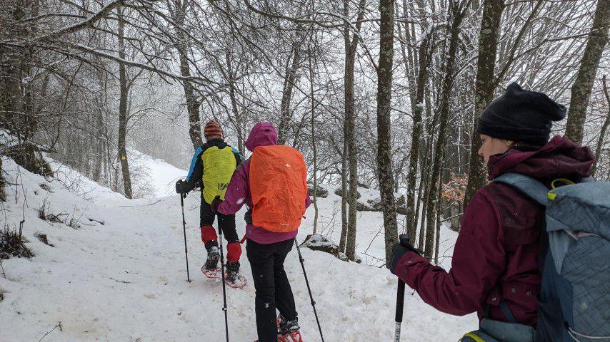 Week end initiation raquettes à neige - Champsaur, Champoléon - 6 & 7 février 2021