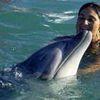 Un delfín salva a dos ballenas encalladas en una playa de Nueva Zelanda