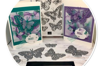 -Technique- Carte de remerciement (suite)  Butterfly Brilliance Stampin'Up!