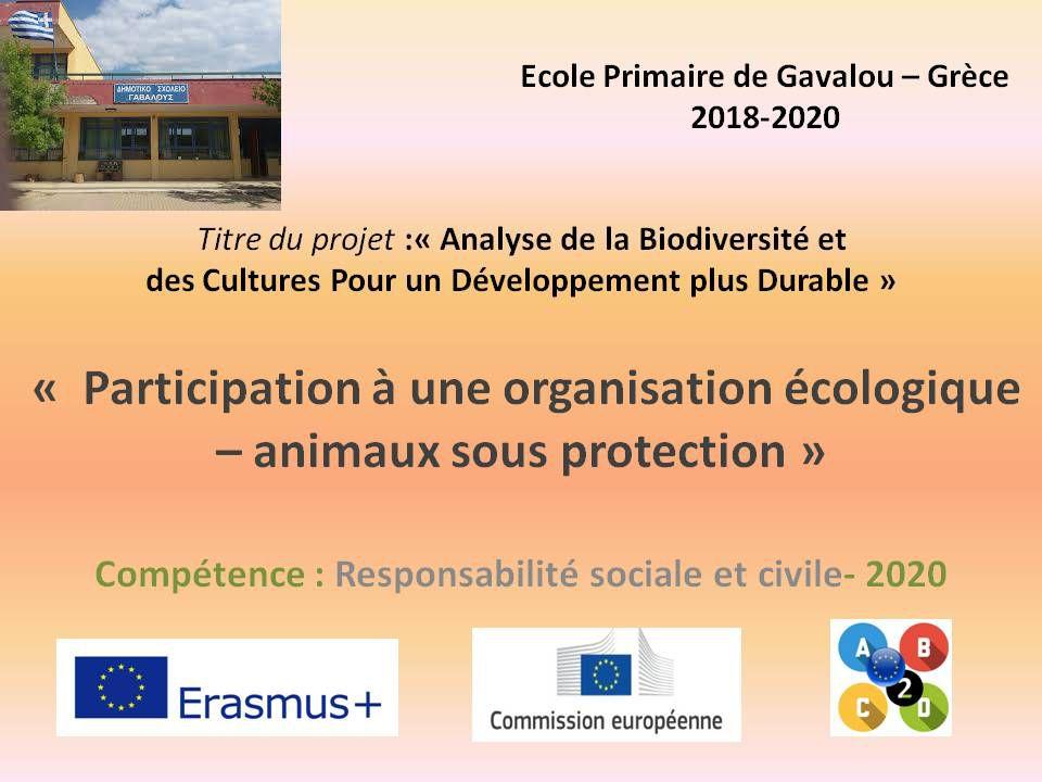RSC - Primaire  Grêce Participation à une organisation écologique – animaux sous protection