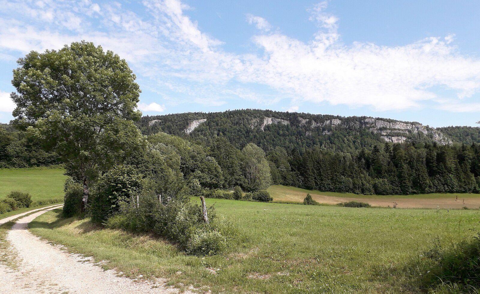 Champs et falaises, près de Bonlieu
