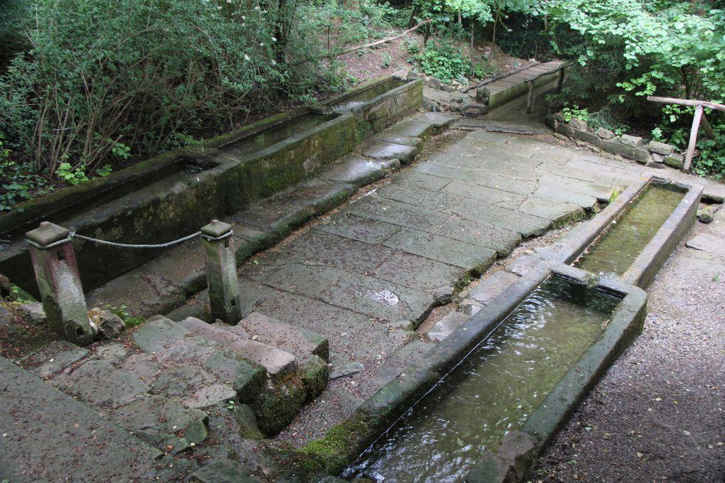 Les lavoirs de la source Saint -Ulrich à Wittersheim