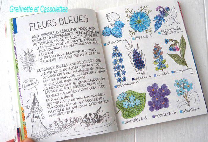 Mini Flore du Jardinier Promeneur, par Marine Cressy, Editions Ulmer