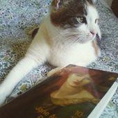 Raison et sentiments de Jane Austen