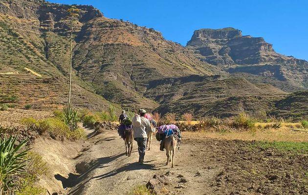 Où, quand effectuer un trek en Ethiopie?