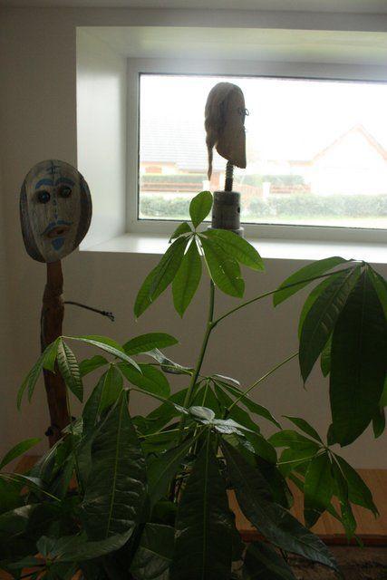 Et la déco provisoire du SPA est terminée elle aussi, jusqu'à l'achat de nouvelles plantes équatoriales !