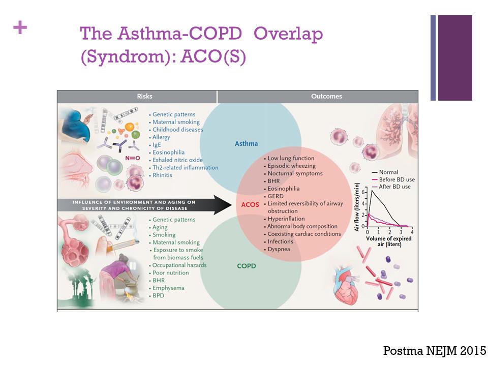 ASTHME - BPCO - ACO