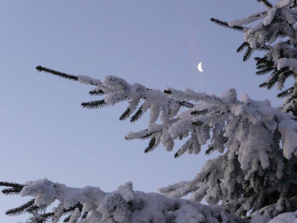Deuxième partie. Sur la clairière entre Umwurf et Schneeberg, la lune tire sa révérence et laisse place à l'astre du jour...