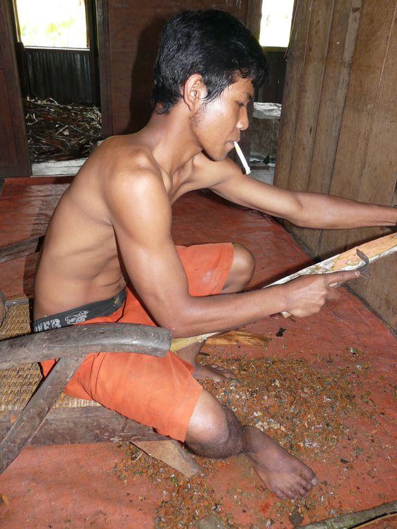 Le périple dans l'Indonésie se poursuit par la surprenante Sumatra. Ici, toutes les religions se côtoient, entre grandes réserves d'Orang Outang et villes soumises aux tremblements de terre et aux volcans ...