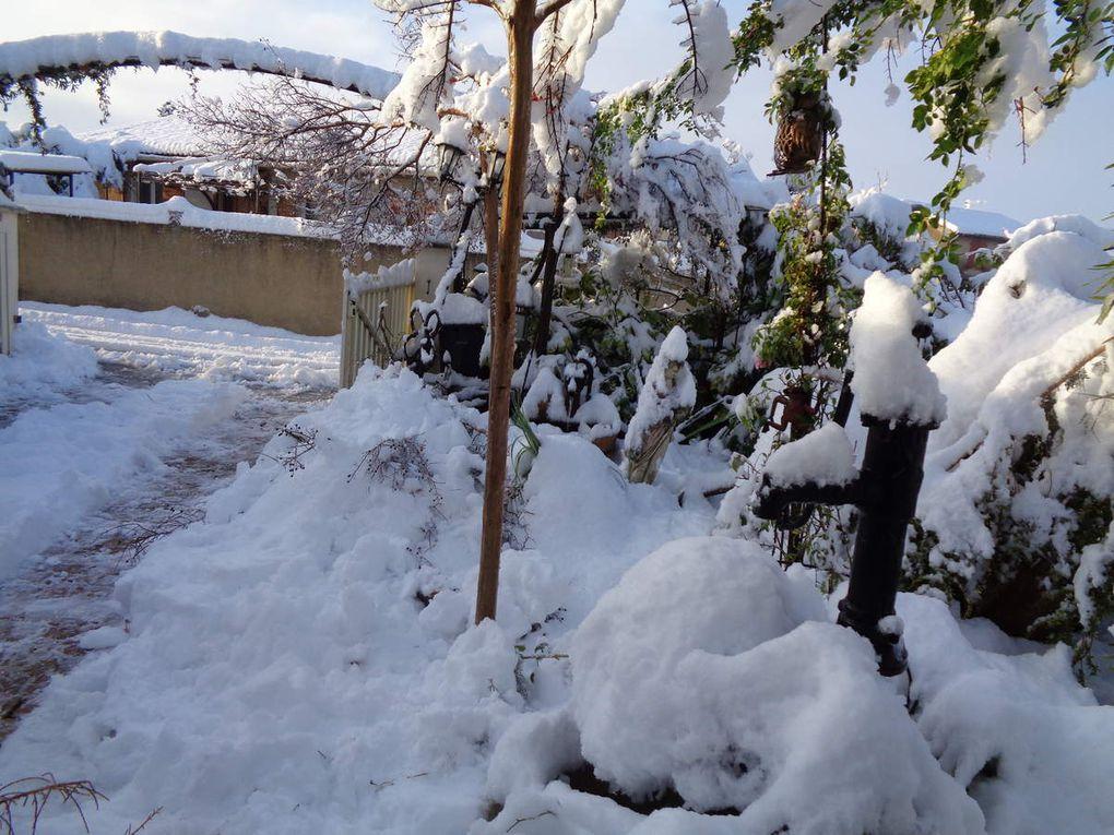 Mon jardin Le Clos fleuri en décembre 2019
