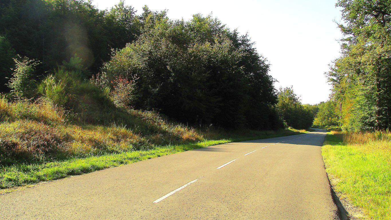 carrefour_Route des Brioleurs (D547)_Route de la Bourdelotte (GR12A)
