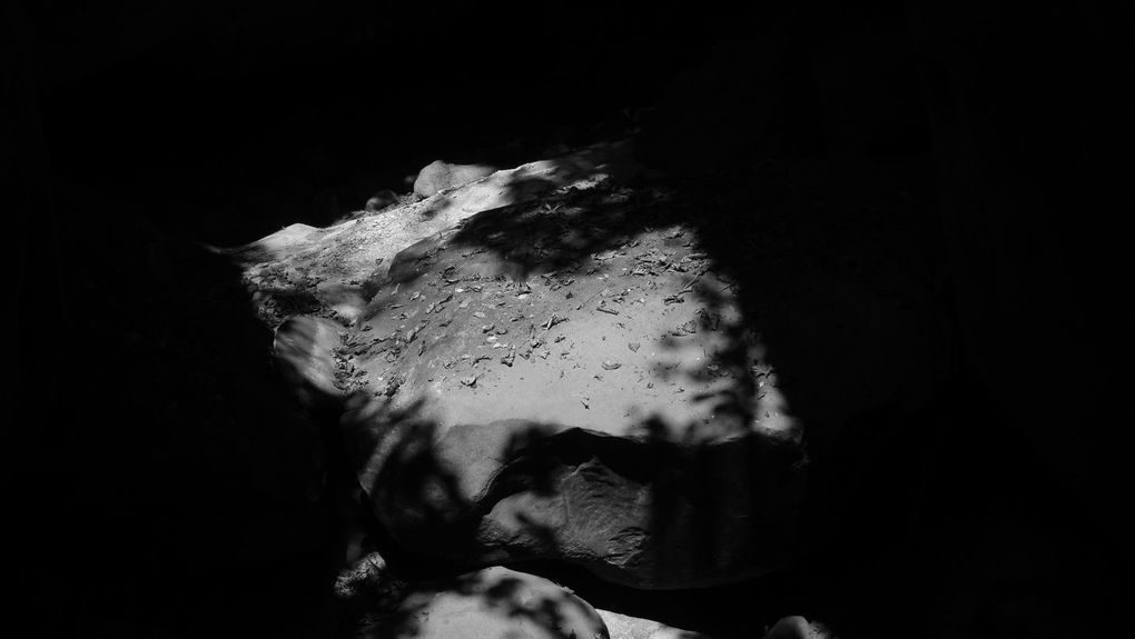 Album - photos d'ombres