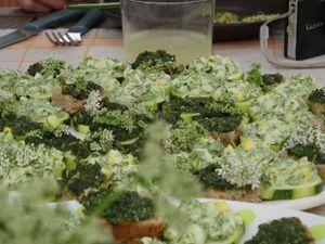 Des pousses d'épiciéa pour les oeufs mimosa  ? pourquoi pas !
