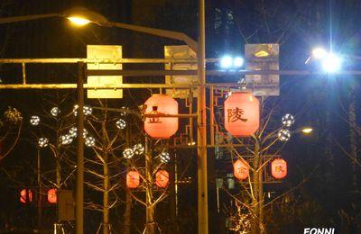 Les fêtes chinoises 中国的节日