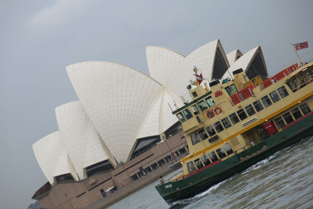 Sydney, by day and by night!