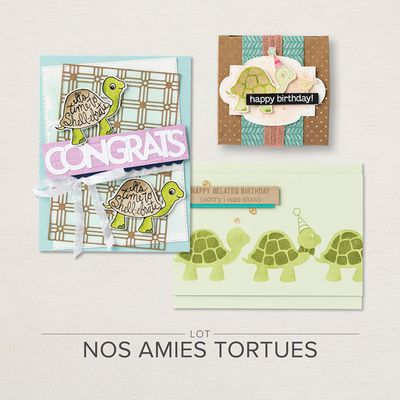 Lot Nos amies tortues