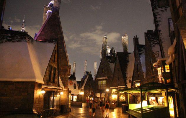 Fin de la visite ! The Wizarding World of Harry Potter