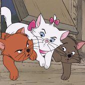 Les chats célèbres