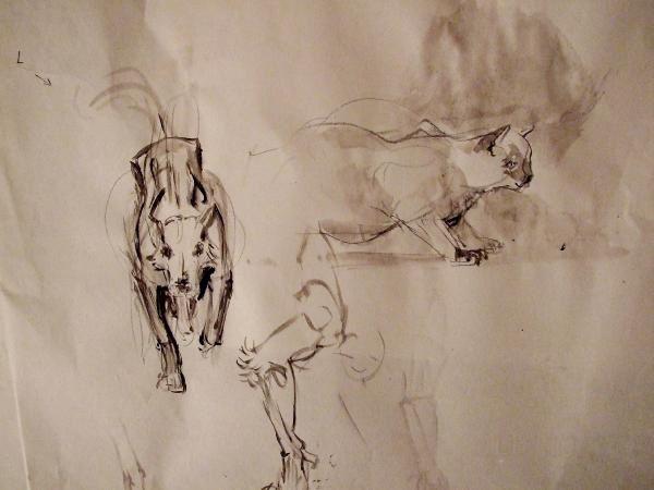 Surtout les animaux de la maison que j'ai sous le pinceau, mais aussi mes visites au champ et au zoo.